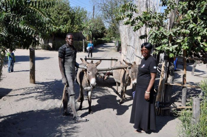 Mwandi Gallery Image #3